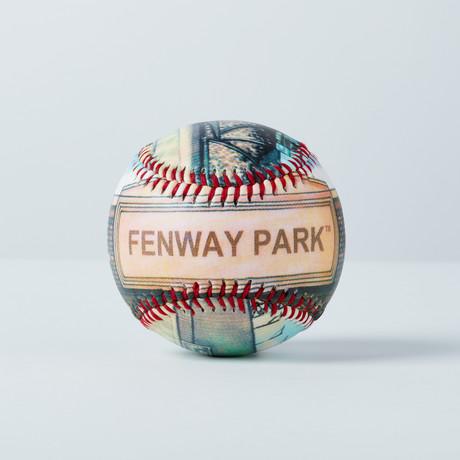 Fenway Park (Baseball + Display Case)