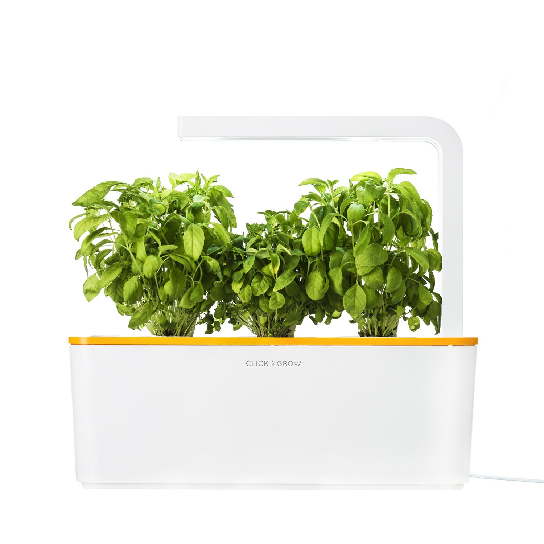 Smart herb garden starter kit orange click grow touch of modern - Indoor herb garden starter kit ...