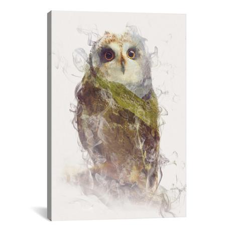 "Owl // Dániel Taylor (26""W x 18""H x 0.75""D)"
