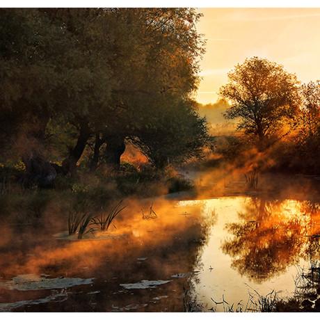 Jimbi // When Nature Paints With Light