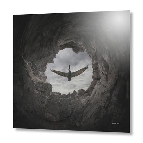 Freedom // Aluminum Print