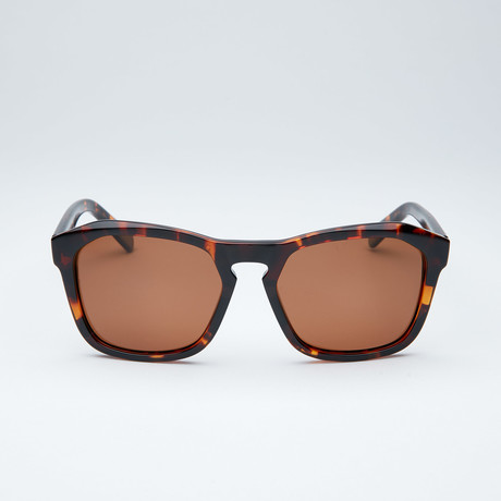 Polarized Geometric // Tortoise