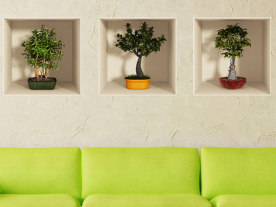 Bonsai_Trees