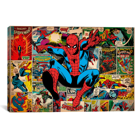 "Marvel Comics // Spider-Man // Covers + Panels (26""W x 18""H x 0.75""D)"