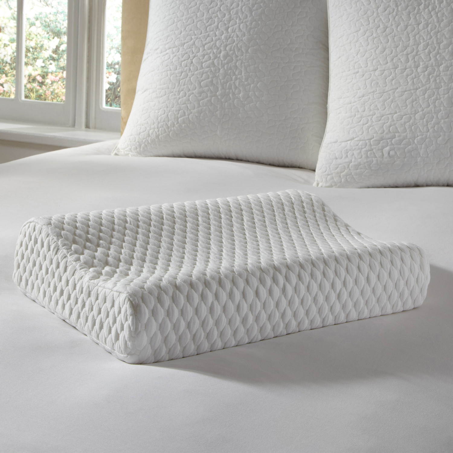 EUROPEUTIC Comfort Cushion Memory Foam Pillow (Contour) - Pure Rest by Rio Home Fashions - Touch ...