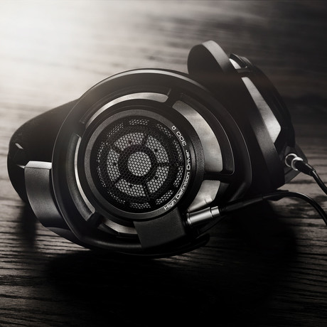 HD800s Headphones