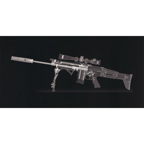 SCAR 16 Rifle