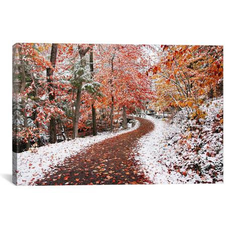 Two Seasons // Ben Heine