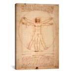 "Vitruvian Man, c. 1490 // Leonardo da Vinci (26""W x 40""H x 1.5""D)"