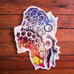 The Illusionist // Pack of 10