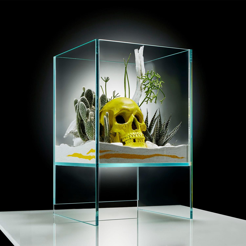 Delightful Elevate Terrarium // Yellow Skull DIY Kit
