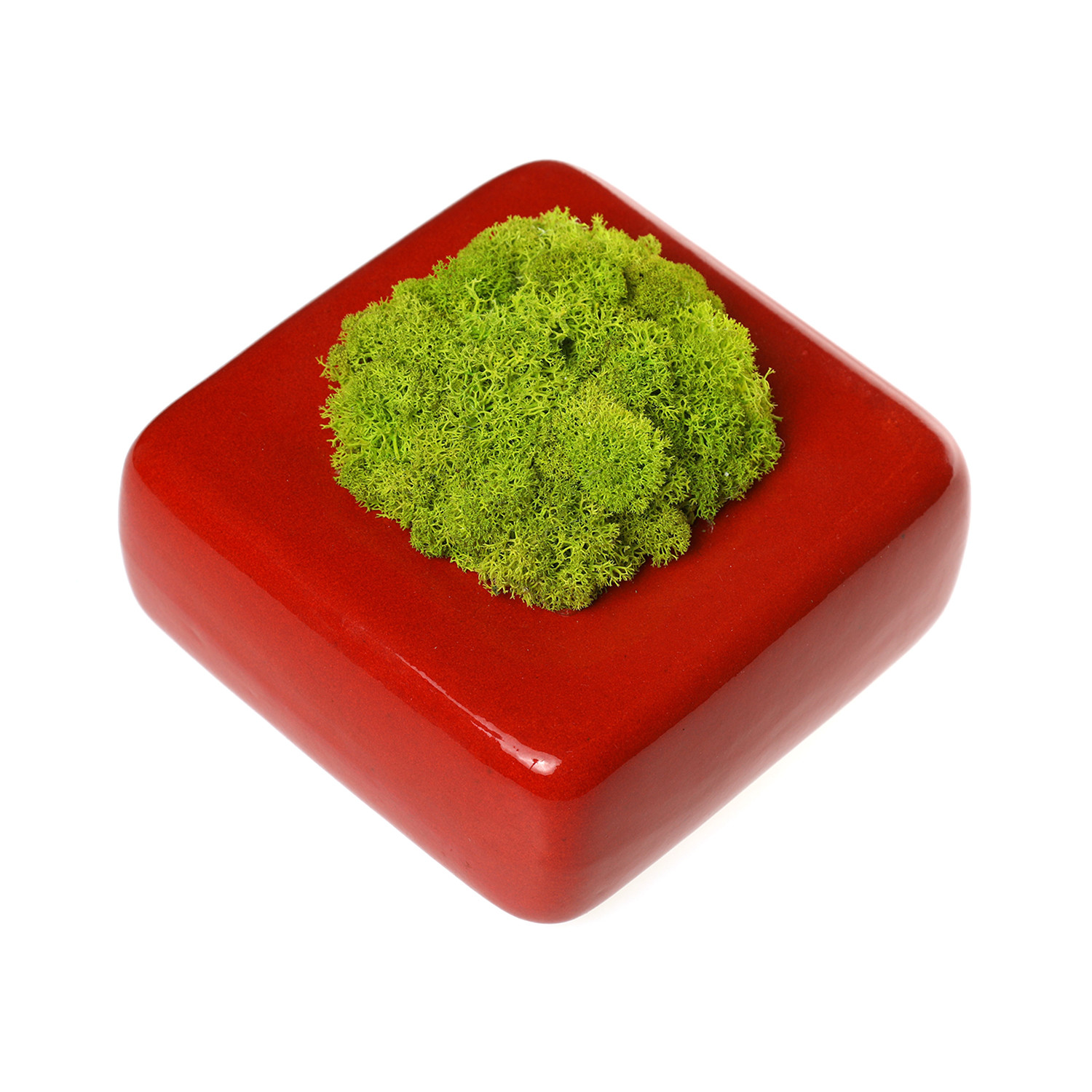 Reindeer Moss Solo Ceramic Planter Red Green