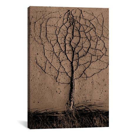 "Asphalt Tree // Rasto Gallo (26""W x 40""H x 1.5""D)"