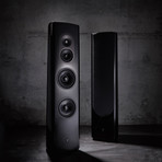 40th Anniversary Three-Way Loudspeaker // 40.2