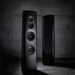 40th Anniversary Three-Way Loudspeaker // 40.2