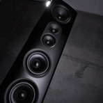 40th Anniversary Four-Way Loudspeaker // 40.3