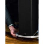 Bipolar Tower Speaker // BP9060