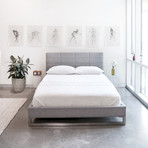 Switch Bed // Queen (Cambie Parchment)