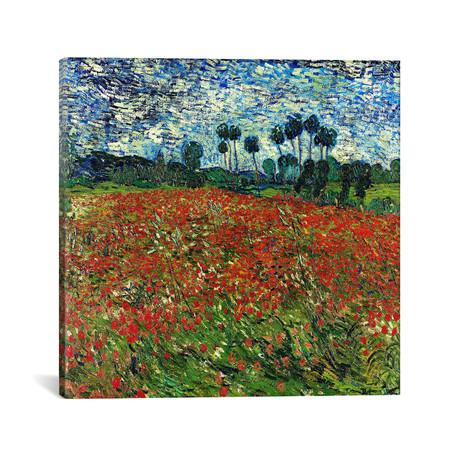 "Poppy Field // Vincent van Gogh // c. 1890 (18""W x 18""H x 0.75""D)"