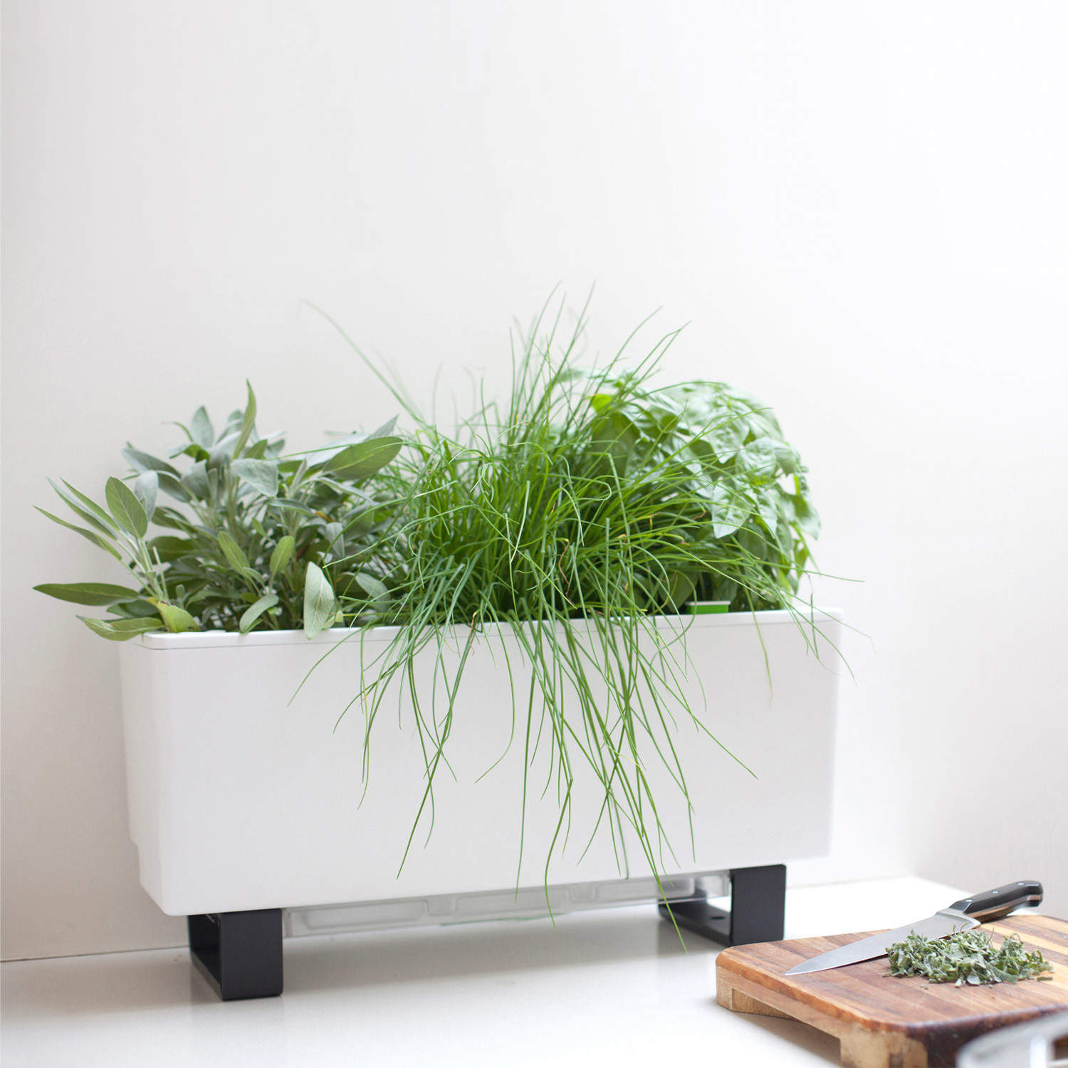 Mini Bench Planter Glowpear Touch Of Modern