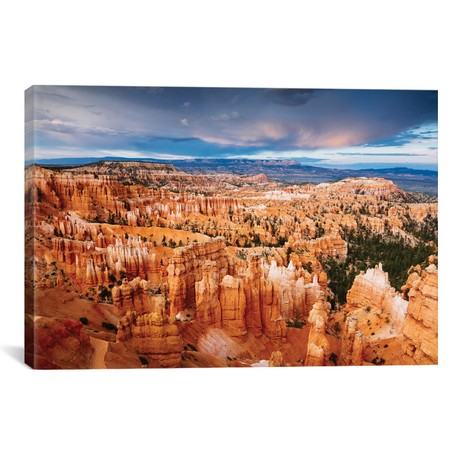 "Last Light, Bryce Canyon National Park, Utah (18""W x 26""H x 0.75""D)"
