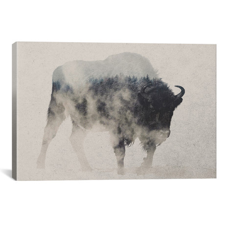 "Bison In The Fog // Andreas Lie (26""W x 18""H x 0.75""D)"