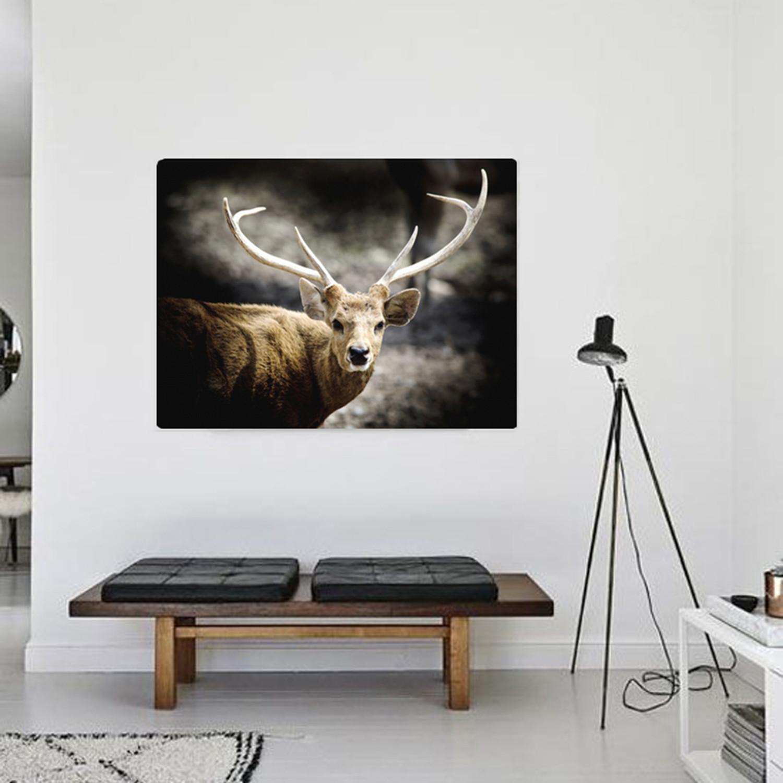 King Deer 24 W X 30 H X 3 8 D Wild At Art Touch Of Modern
