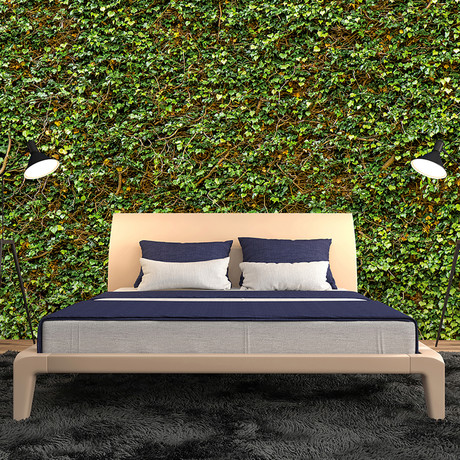 Brewster home fashions photorealistic wall murals for Brewster wallcovering wood panels mural 8 700