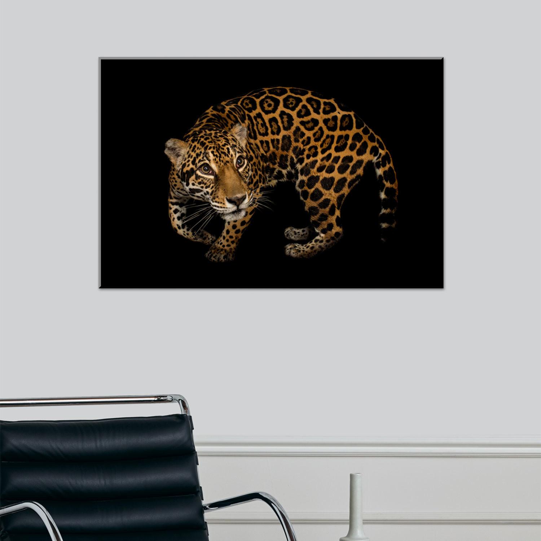 salsa jaguar type f dallas youtube of r watch