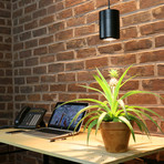 40W LED Pendant Decor Grow Light