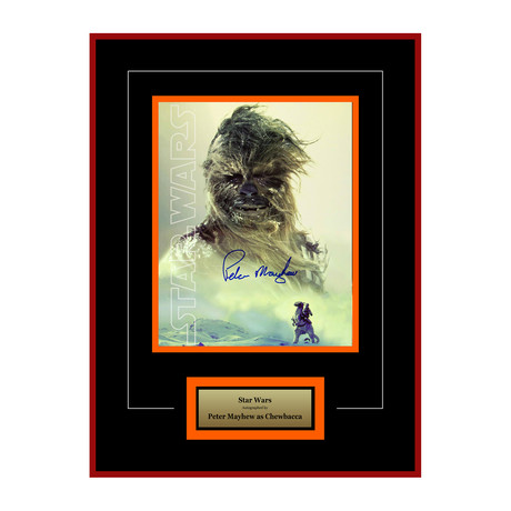 Signed Artist Series // Chewbacca I