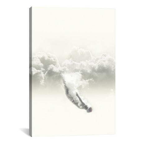 """Sky Diver // Fran Rodriguez (18""""W x 26""""H x 0.75""""D)"""