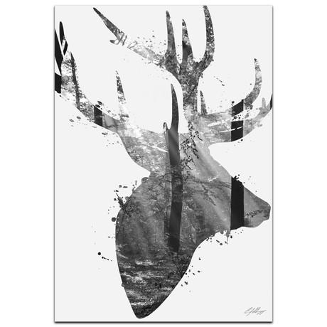 Forest Deer // Black + White
