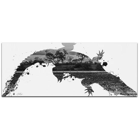 Alligator Swamp // Gray