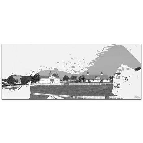 Horse Ranch // Black + White