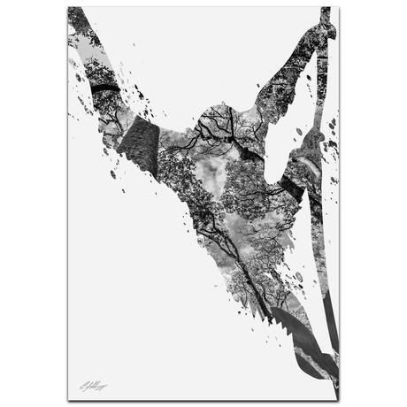Monkey Jungle // Gray