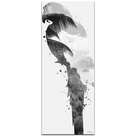 Parrot Tropics // Black + White