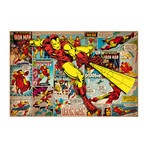 "Marvel Comics // Iron Man // Covers + Panels (26""W x 18""H x 0.75""D)"