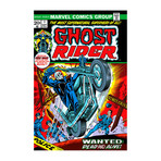 "Marvel Comics // Ghost Rider Issue Cover #1 (18""W x 26""H x 0.75""D)"