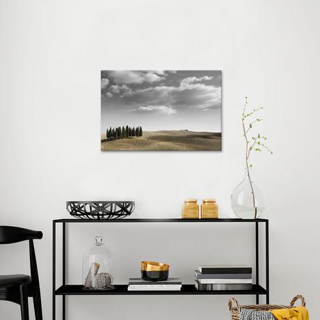 Toscana Landscape II