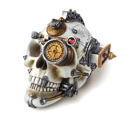 Erasmus Steampunk Skull