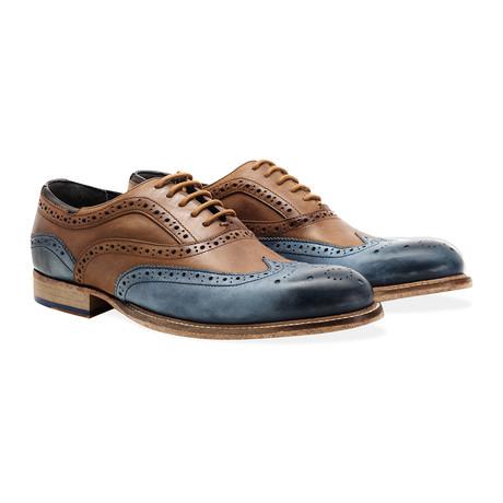 Harwood Wing Tip Brogue Oxford // Tan + Blue