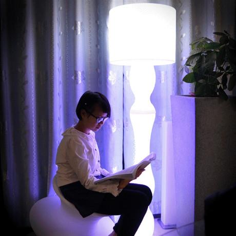 Basa Bluetooth Speaker Color-Changing Floor Lamp