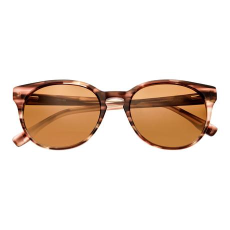 Clark Polarized Sunglasses (Brown Tortoise Frame + Brown Lens)