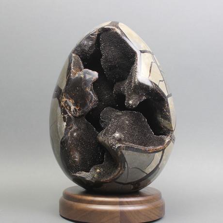 """Septarian Egg (4.75"""")"""