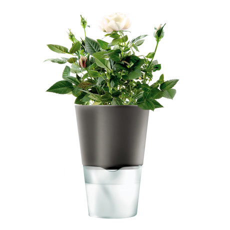 Self-Watering Herb Pot (Chalk White)