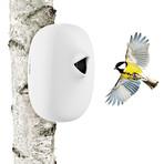Bird Nesting Box