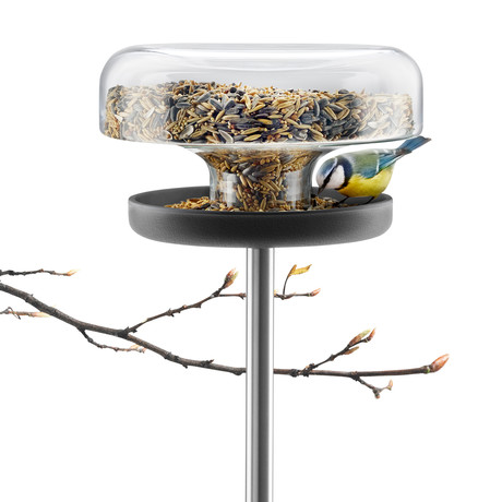 Bird Feeder Table