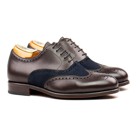 Brogue // Brown + Navy