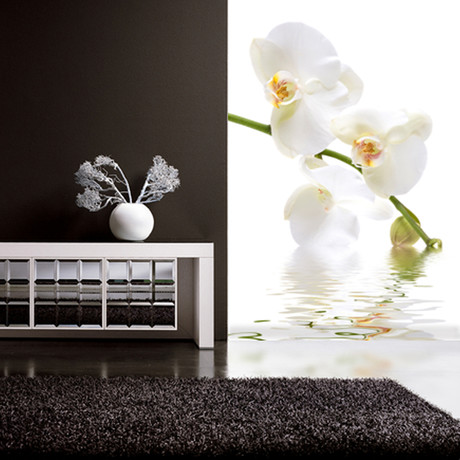 Orchid Waters Wall Mural